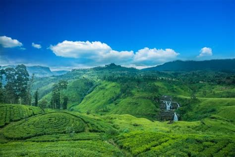 11 Unforgettable Experiences You Need to Have in Sri Lanka