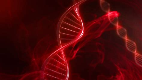 Red DNA Code With Genetic Background in slow motion 3D