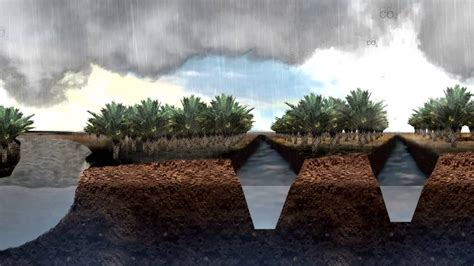 Peat Destruction, Soil Subsidence and Flooding in South