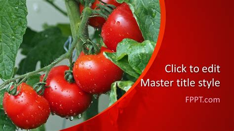 Free Tomatoes PowerPoint Template - Free PowerPoint Templates